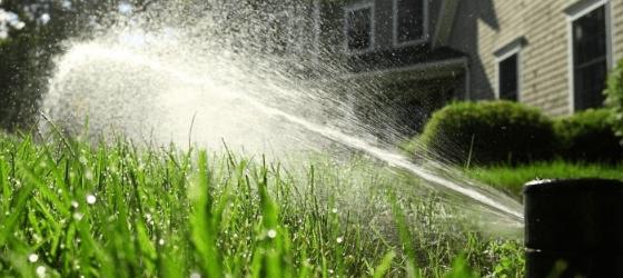 thirsty-turf-irrigation-4